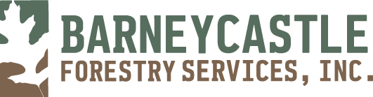 Barneycastle Forestry Services