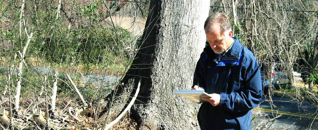 Barneycastle Forestry Services, Inc. is a full service arboriculture consulting firm